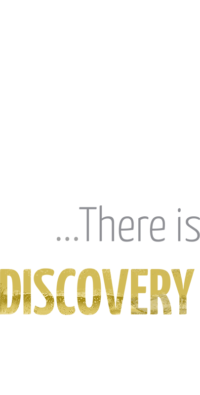 ...There is Discovery